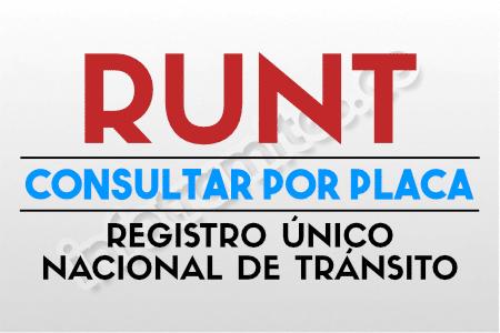 registro unico nacional de transito