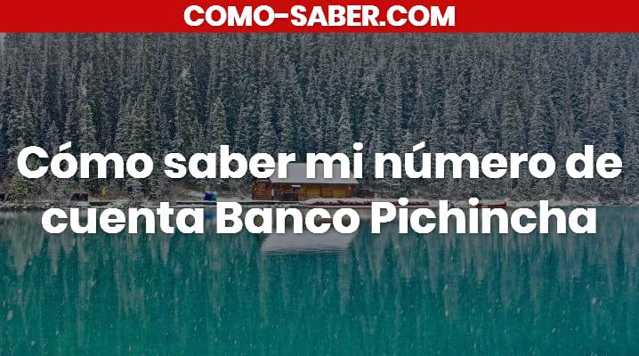 Cómo saber mi número de cuenta Banco Pichincha