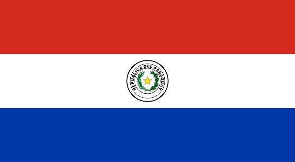 Cuáles son las discapacidades que existen en Paraguay