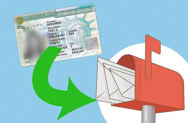 Seguimiento green card