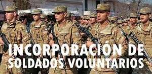 soldados voluntarios